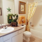 Bristol Oaks Apartment Bathroom