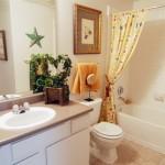 Bristol Oaks Apartment Bathroom