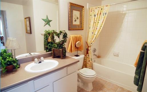 Apartment Bathroom apartment bathroom fabulous small decor excellent ideas decorating