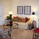 Estancia at Morning Star Apartment Living Room