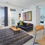 Austin Ranch Apartment Living Room
